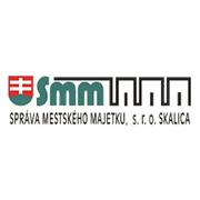 miss_smm